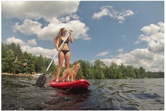 Lac du Flambeau, วิสคอนซิน: Enjoy FREE use of our Paddle boards