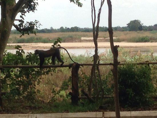 Selous Game Reserve, Tanzania: The view from the dining area