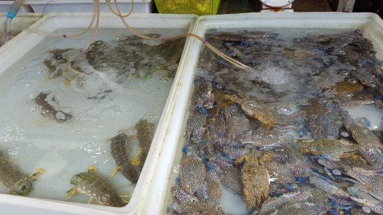 Rawai, Thailand: Seafood Market
