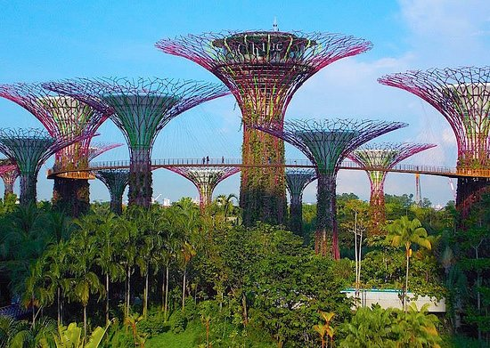 gardens by the bay like nothing youve ever seen or exerienced