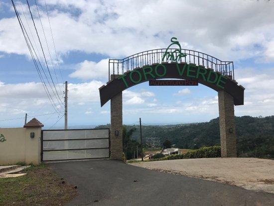 Toro Verde Nature Adventure Park: photo4.jpg