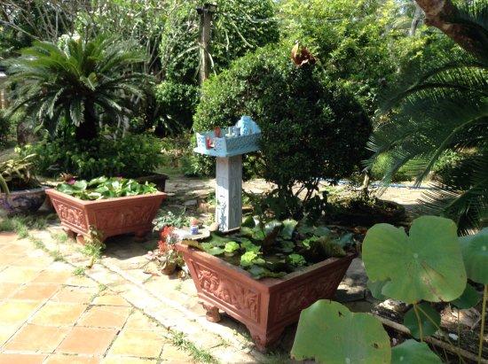 Cai Be, Vietnam: Le jardin 6.