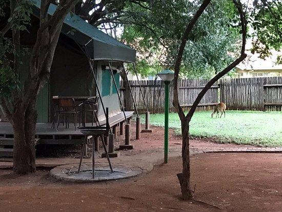 Crocodile Bridge Rest Camp Photo