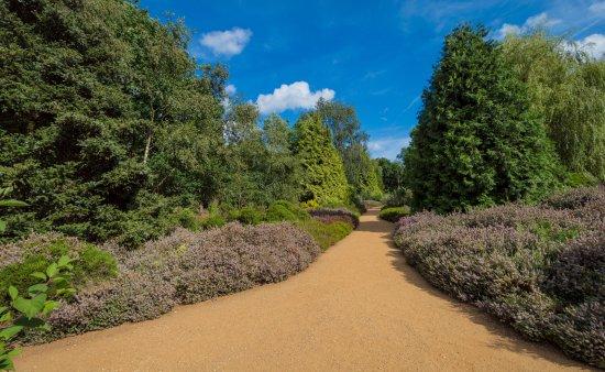 Richmond-upon-Thames, UK: Photo of inside Isabella Plantation