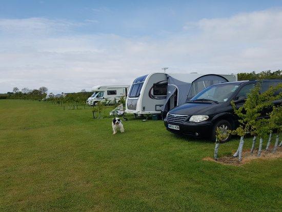 Banwell, UK: Stonebridge Farm Caravan Park