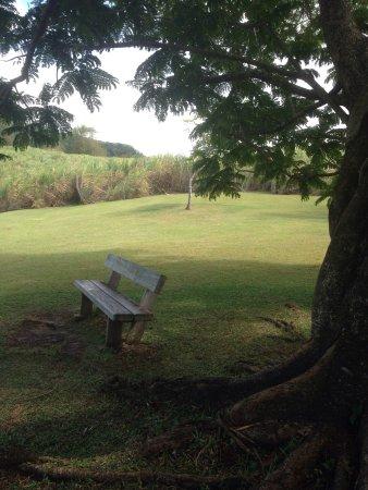 Ле-Франсуа, Мартиника: photo4.jpg