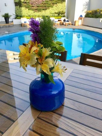Melia Lima: Piscina totalmente renovada y con un precioso jardín vertical