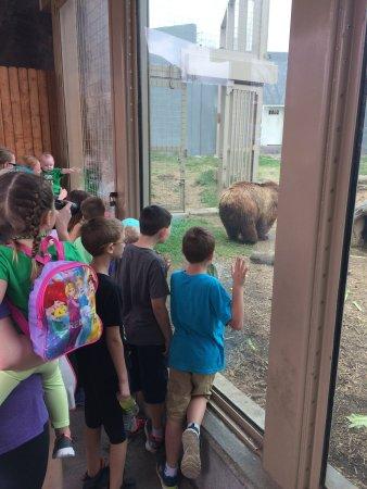 Tulsa Zoo Bild