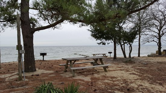 Piney Point, MD: Camp Site at Far East Beach