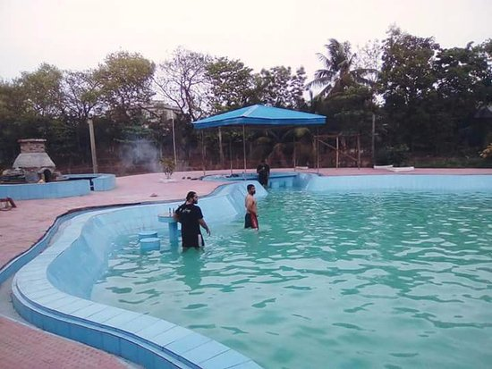 55 39 Feet Amoeba Swimming Pool With Attached Underwater Restaurant Picture Of Meghna Village
