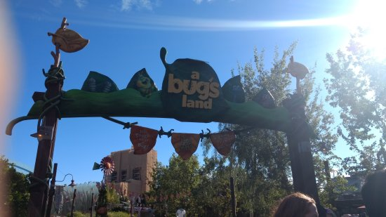 Disney's California Adventure: IMG_20161224_100740503_large.jpg