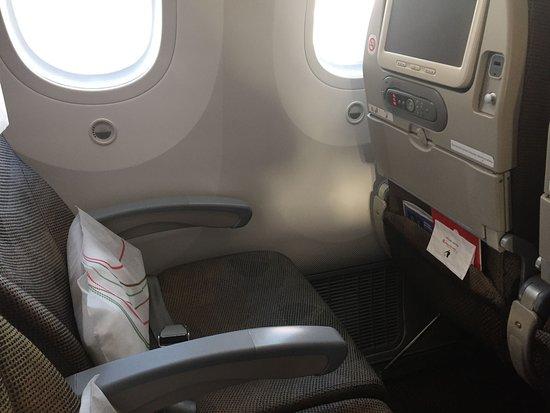 Economy class seats on 787     good legroom - Picture of