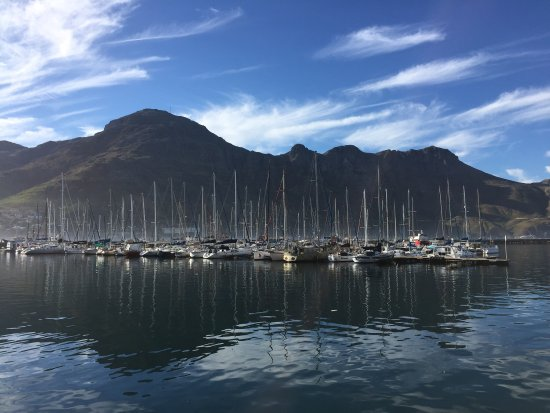Hout Bay, Sydafrika: photo8.jpg