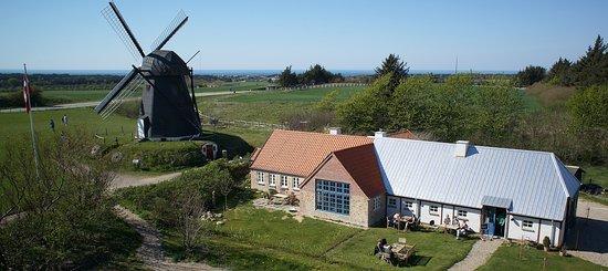 Keramikcafé Møllehuset: Fra oven