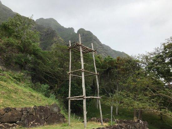 Kaneohe, Hawái: photo8.jpg