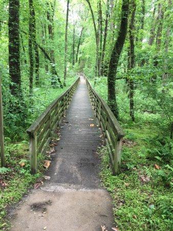 Scotland Neck, North Carolina: photo0.jpg