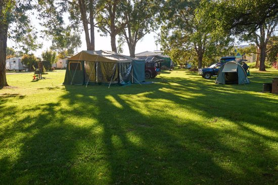 Walcha Caravan Park: Our campsite - lots of grass for the kids and a peaceful place to be surrounded by lovely views.