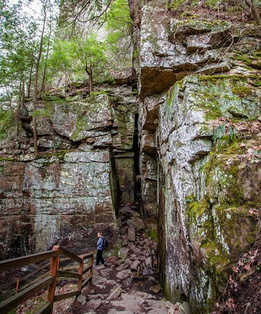 Spencer, TN: Fall Creek Falls trail