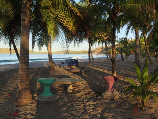 Puerto Carrillo: 6 am with long shadows at south end under the palms.