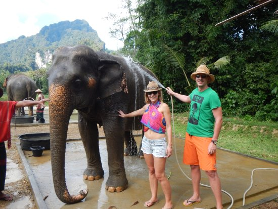 Elephant Hills Tented Camp : Close interaction with the elephants