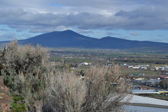 Prineville, OR: oh une oie !