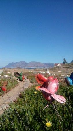Kalk Bay, Güney Afrika: Esterno