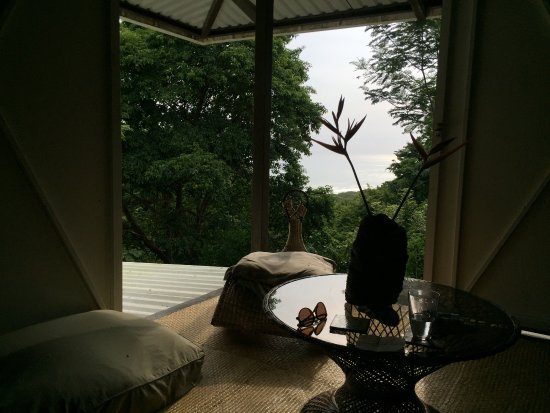 Pura Vida Bodyworks: The view from the living room of the studio