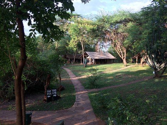 Voyager Ziwani, Tsavo West: photo1.jpg
