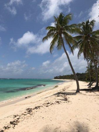 Grand Bourg, Guadeloupe: photo0.jpg