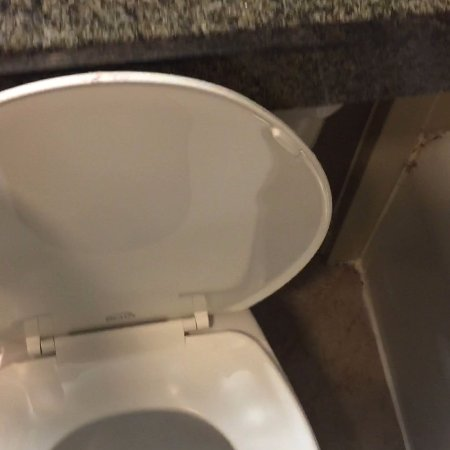 Gaithersburg, MD: toilet lid blocked by counter