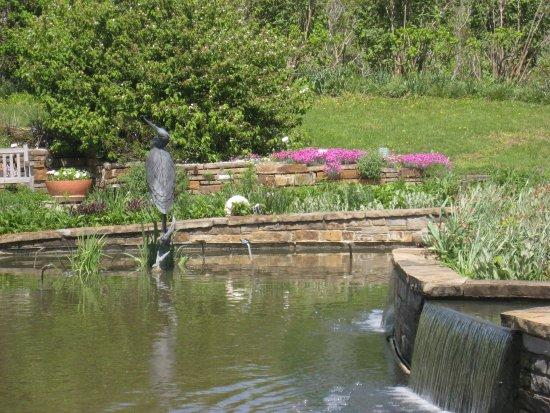 Picture Of Powell Gardens Kingsville Tripadvisor