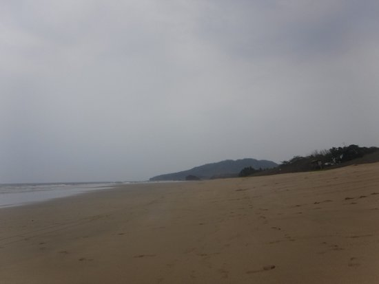 Playa Grande, Costa Rica: photo3.jpg