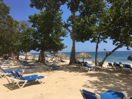 Sandals South Coast: lots of shade and lounge chairs