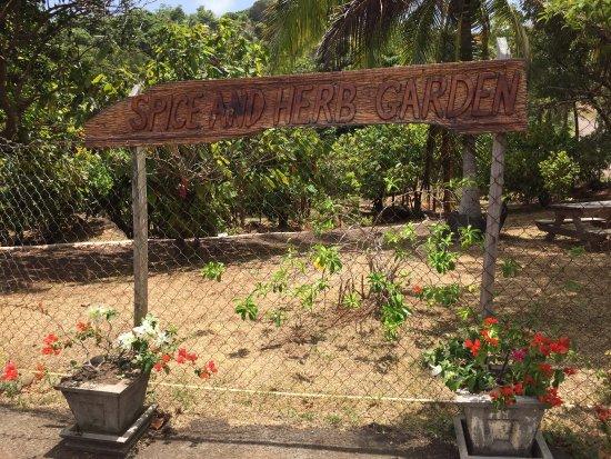 Laura's Herb & Spice Garden