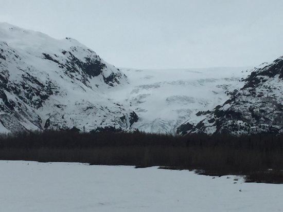 Kenai Fjords National Park, AK: photo1.jpg