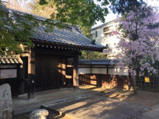 Koganei, Japonya: photo0.jpg