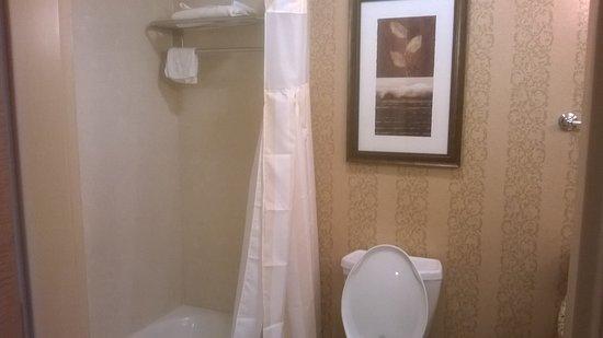 Hilton Garden Inn Twin Falls Photo
