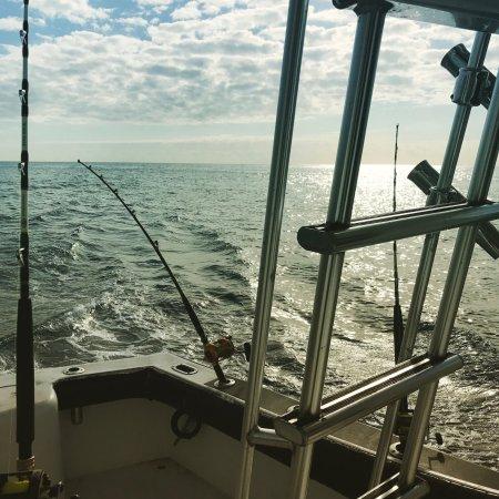 Picture of sea cross miami deep sea fishing for Miami fishing trips