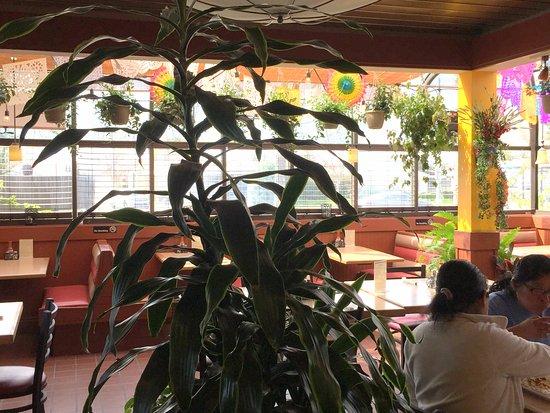 La Plaza Mexican Restaurant Santa Rosa Ave
