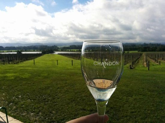 Gisborne, Australia: Tour the spectacular lush green pastures and rolling hills of the Yarra Valley Wine Region