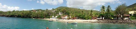 Trois-Ilets, Martinique: Dauphins à fleur d'O