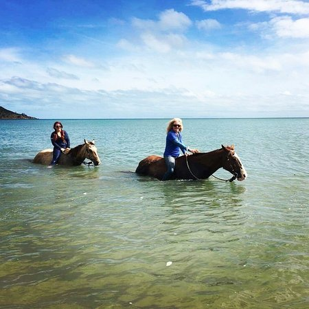 Magnetic Island, Australia: Riding bareback in the ocean Amazing..
