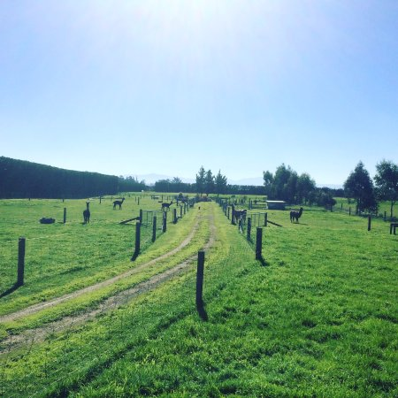 Rangiora, New Zealand: Come and view NZ countryside