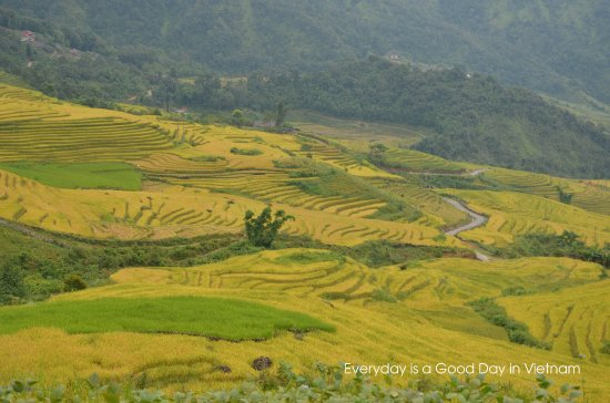 Xin Chao Private Vietnam Tours