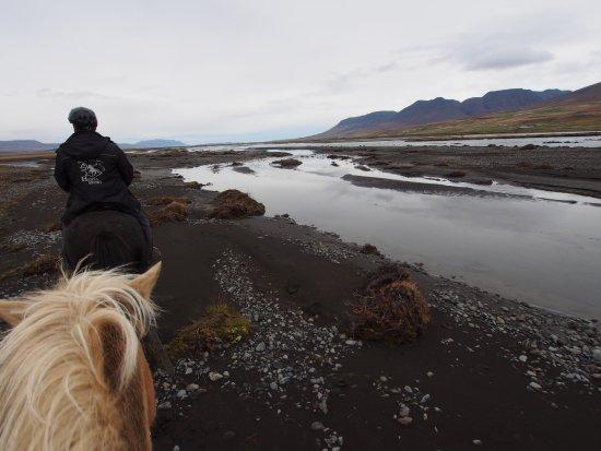 Varmahlid, Iceland: Horse riding