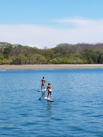 Single Fin Surf Charters: Paddle boarding