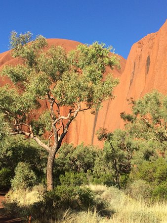 SEIT Outback Australia - Day Tours