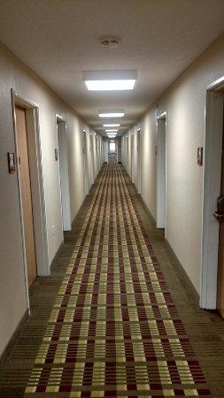 Paw Paw, MI: Ordinary Corridor