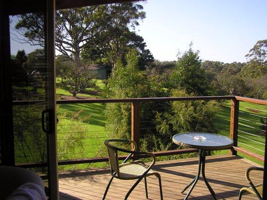 North Tamborine, Australië: La magnifique terrasse ensoleillée.