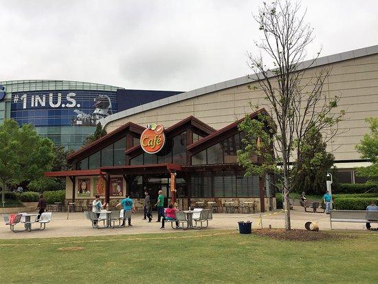 Dog Friendly Restaurants In Dallas Georgia